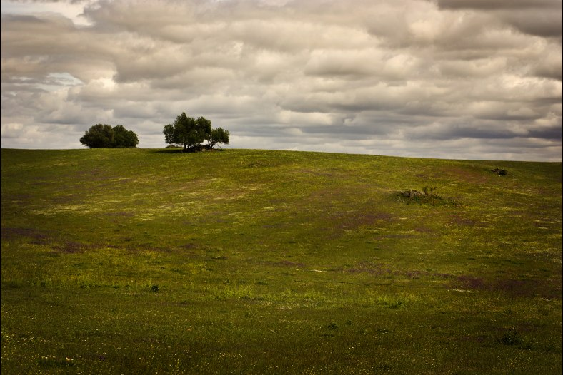 An Alentejo Landscape